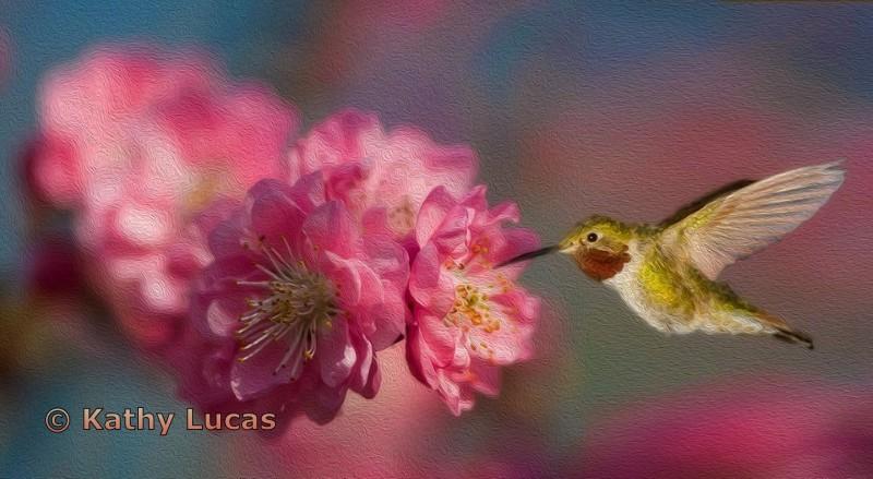 Cherry Blossom Nourishment