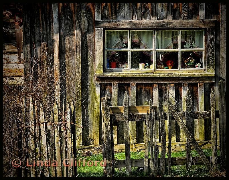Pioneer Window