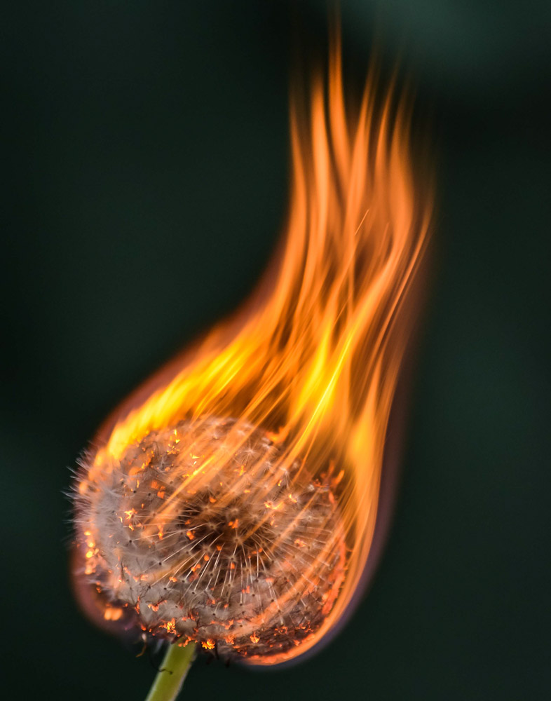 firesm(1)