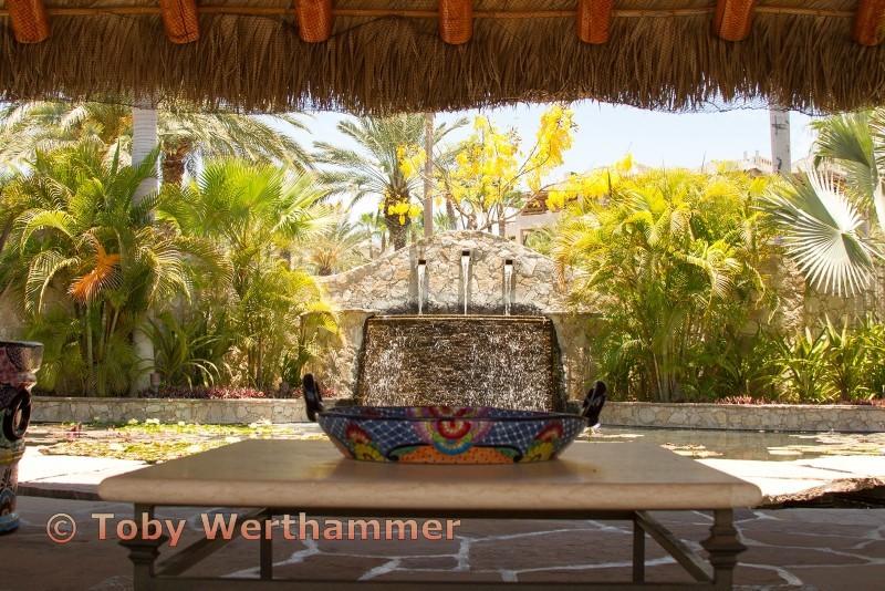 Tray in Tropics