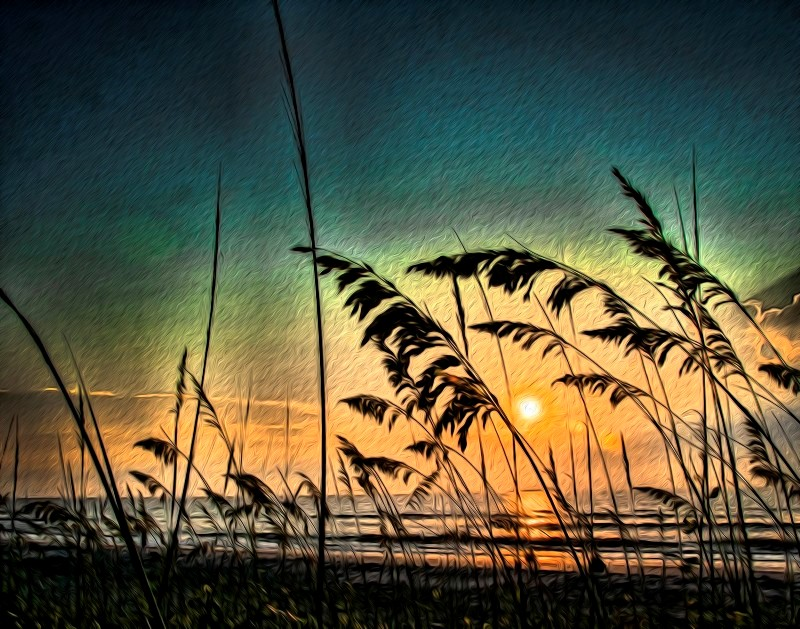 Sunrise thru the Sea Oats