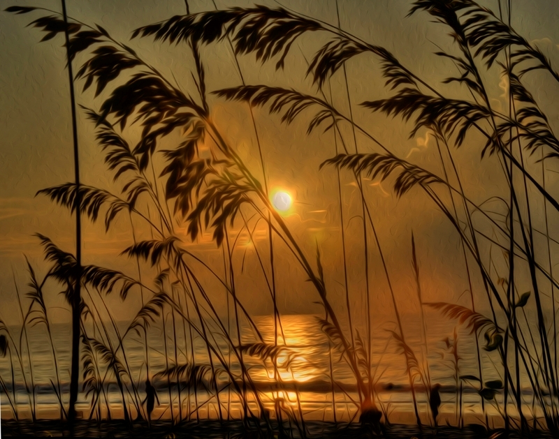 Golden Sunrise on Amelia Island