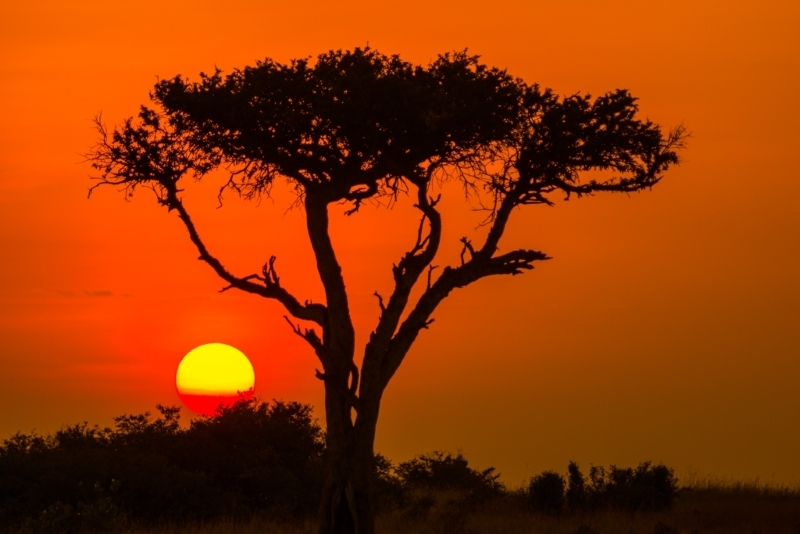 Masa Mara Sunrise