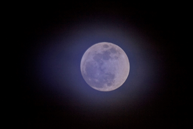 Blue Moon Over Kentucky