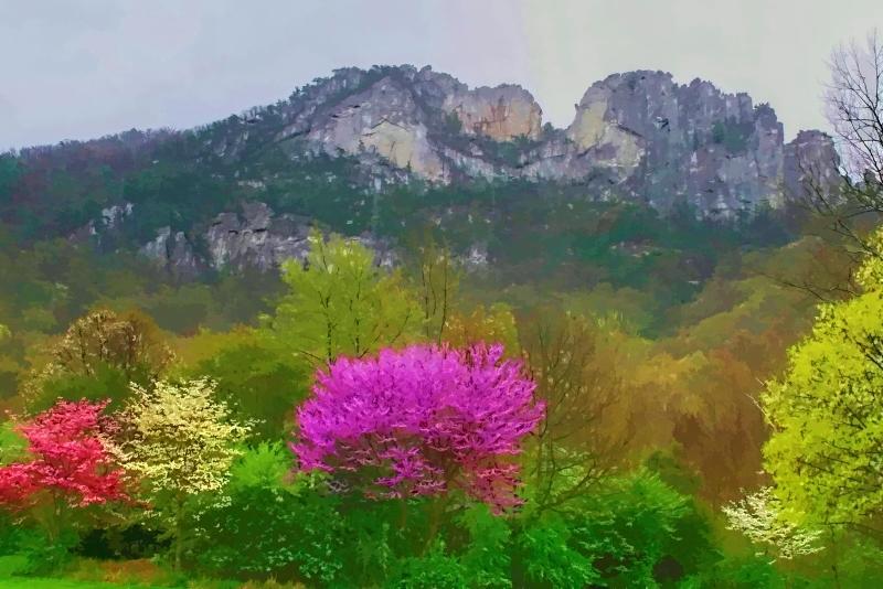 Seneca Rocks Spring