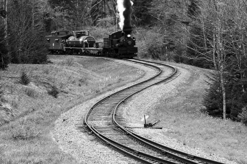 Shay Rails