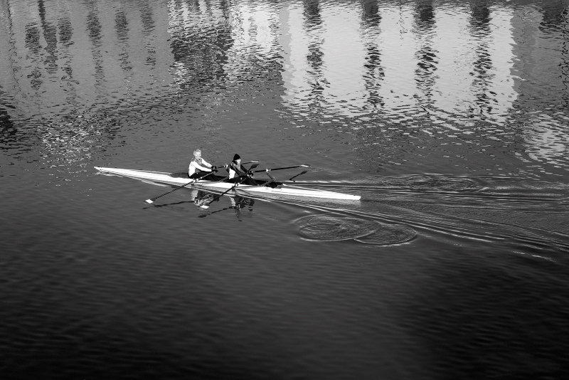 Early Morning Rowers