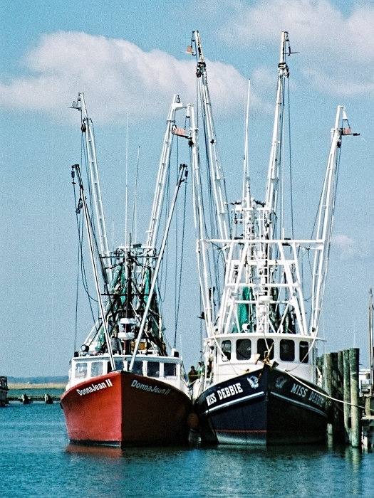 Chincoteague Boats