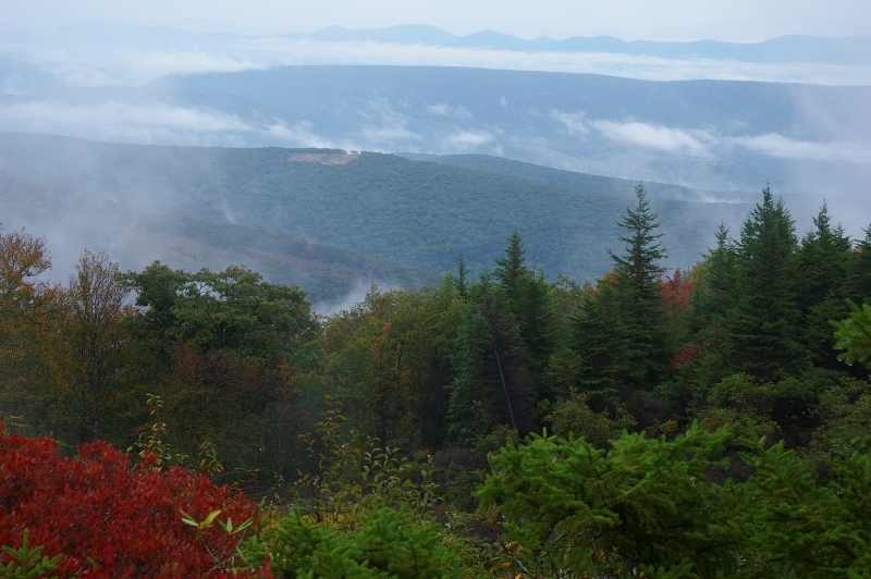 Dolly Sods Overview