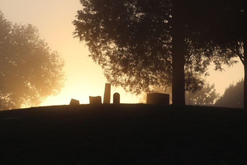 Morning in Cemetery