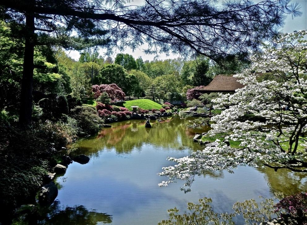 Japanese Formal Garden