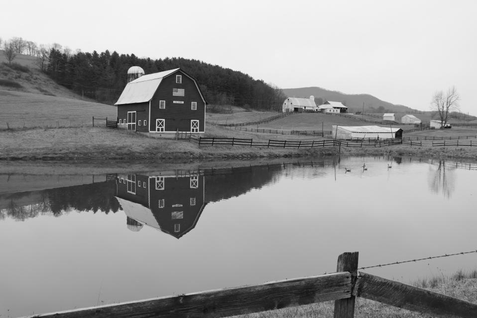 Edray Farm