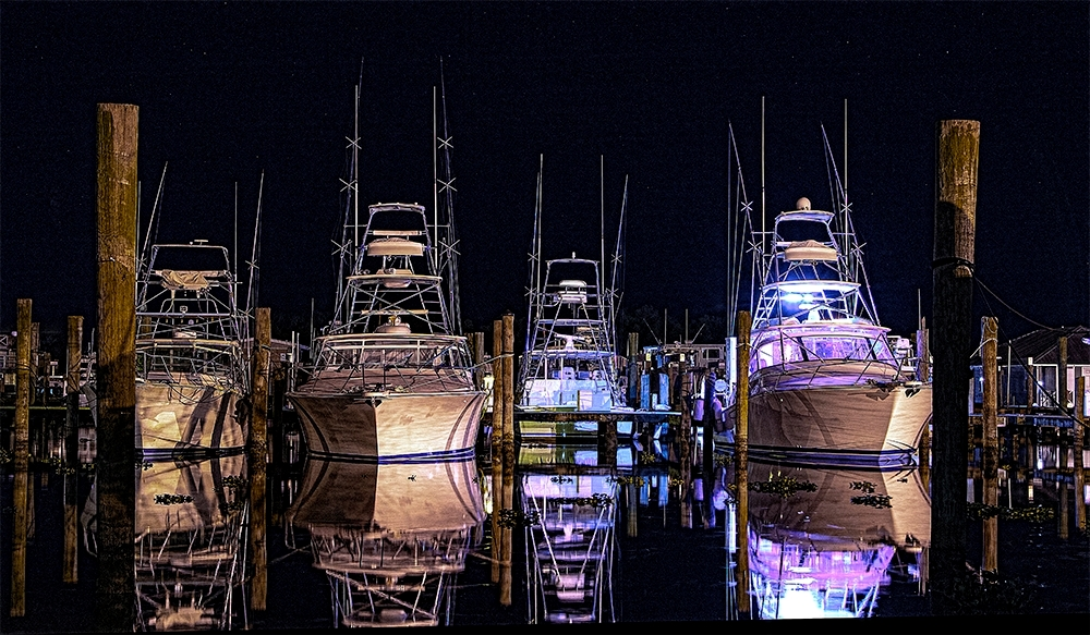 Fleet in Venice
