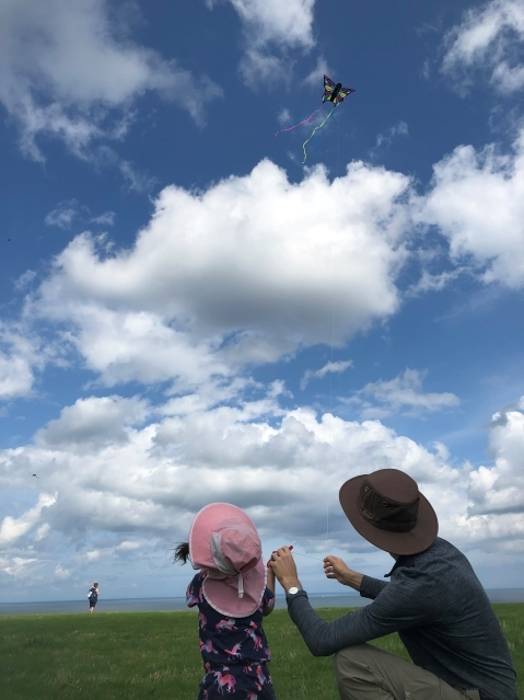 Great Day to Fly a Kite