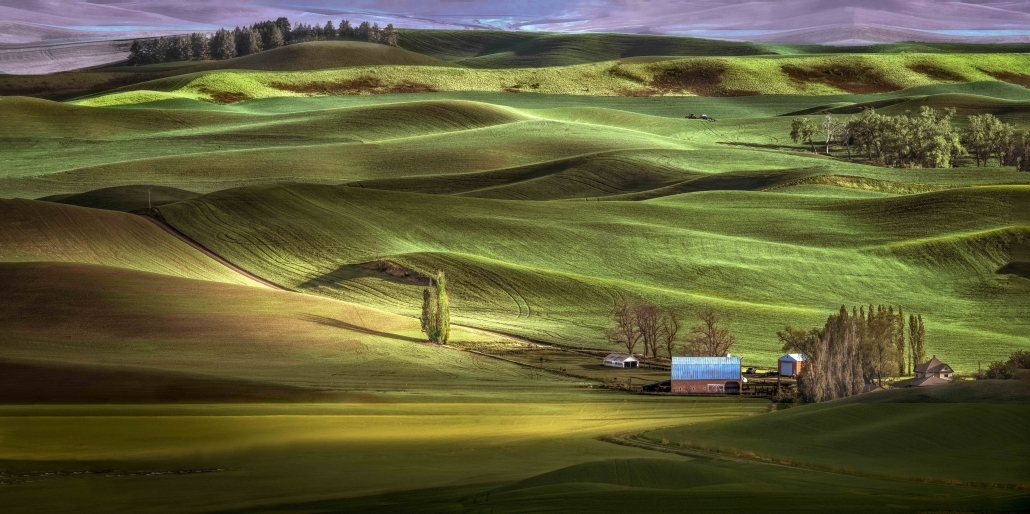 Palouse Farm Pano